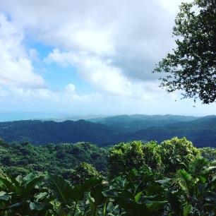 El Yunque view