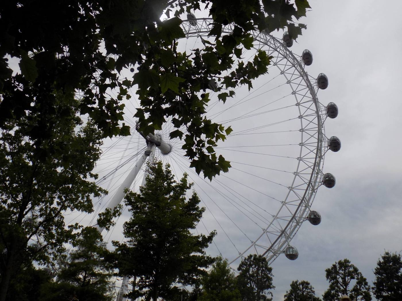 London Eye View From Park