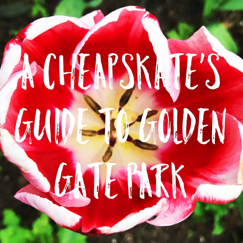 A Cheapskate's Guide to Golden Gate Park