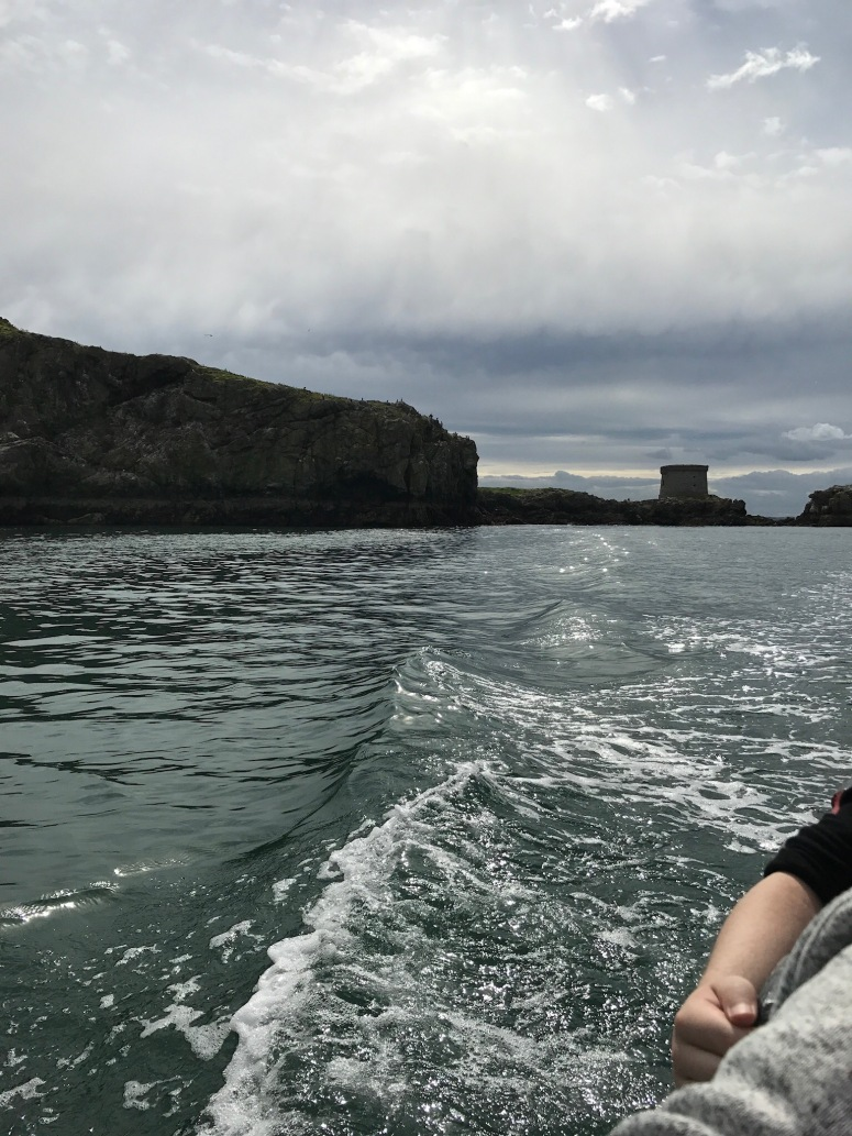 Boat ride to Ireland's Eye