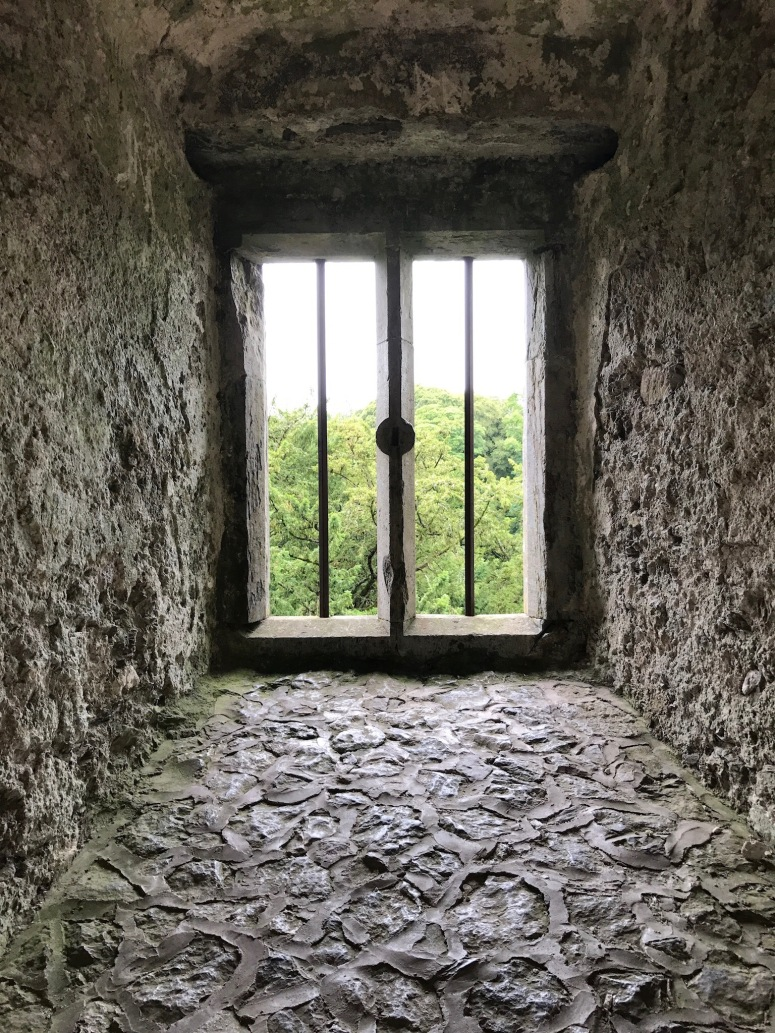 Blarney Castle Window